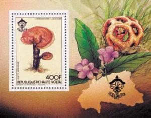 Ganoderma lucidum, Briefmarke aus Obervolta