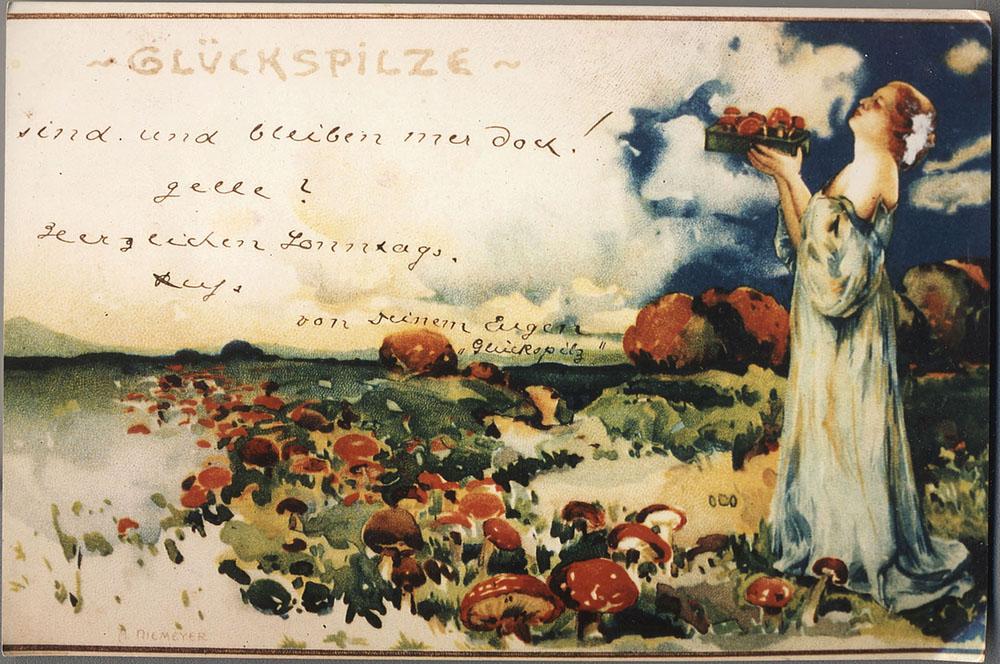 Der Fliegenpilz als Glückspilz auf einer Postkarte von 1899