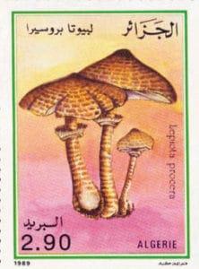 Parasol, Marke aus Algerien 1989