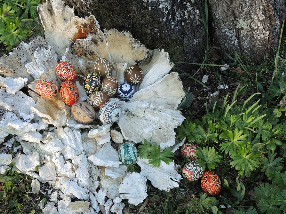Ostereier ins einem Nest aus Schwefelporlingen