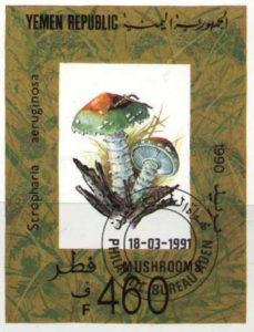 Pilzbriefmarke aus Yemen mit dem Grünspan-Träuschling Stropharia aeruginosa